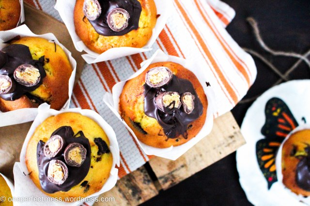Apricot and Dark Chocolate Fruchoc Muffins recipe One Perfect Mess 8